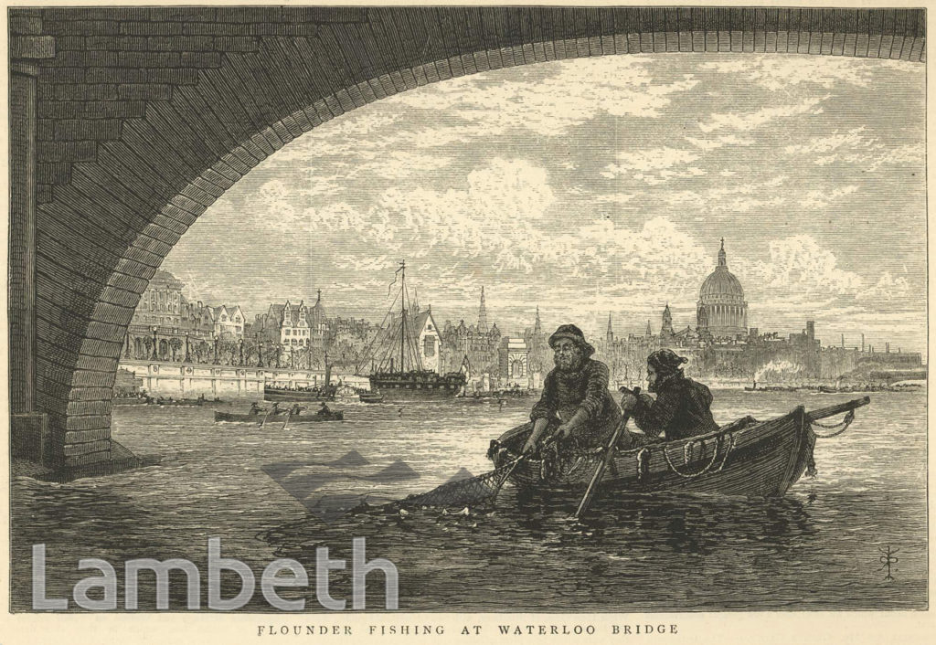 FLOUNDER FISHING, WATERLOO BRIDGE