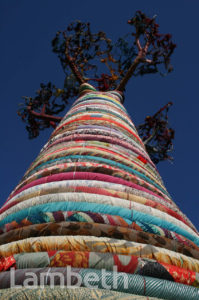 BAOBAB TREE, QUEEN ELIZABETH HALL, SOUTH BANK