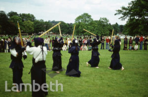 MARTIAL ARTS, FESTIVAL OF SPORT, BROCKWELL PARK