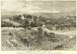 BROCKWELL PARK SITE, HERNE HILL, FROM KNIGHT'S HILL