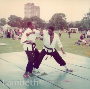 MARTIAL ARTS, FESTIVAL OF SPORTS, BROCKWELL PARK, HERNE HILL