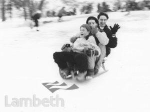 SNOWFALL, BROCKWELL PARK, HERNE HILL