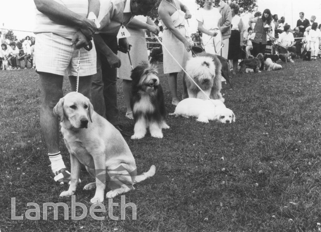 DOG COMPETITION, LAMBETH COUNTRY SHOW, BROCKWELL PARK