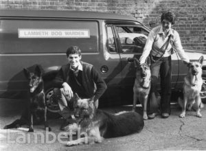 LAMBETH LAMBETH COUNCIL DOG WARDENS