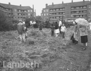 GREENING PROJECT, TULSE HILL ESTATE.