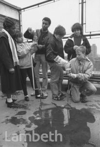 ACID RAIN TESTS, STOCKWELL PARK SCHOOL, STOCKWELL
