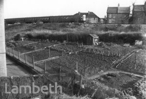 ALLOTMENTS OFF EAST PLACE, WEST NORWOOD