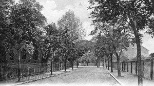The Avenue, Grove Park