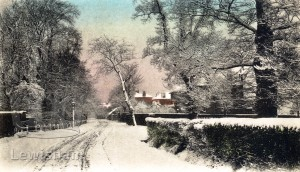 Hither Green Lane In Winter