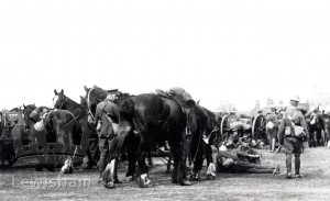 Army troops and horses resting on Blackheath