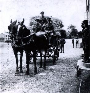 Lewisham Volunteers 1915 – 1919