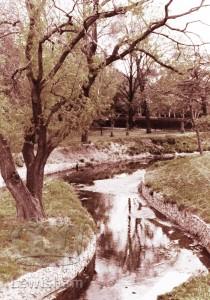River Ravensbourne Ladywell Fields