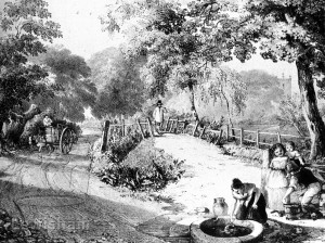 Lady Well From Warren's Views Of The Ravensbourne