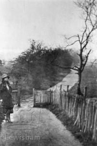 Whitefoot Lane