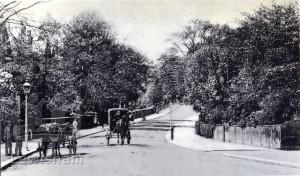 Westwood Hill