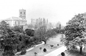 Garden Of Lewisham House, View From Roof