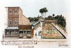 Hally's Nursery, Blackheath Village