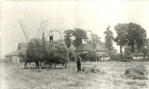 Bulls Farm Haymaking