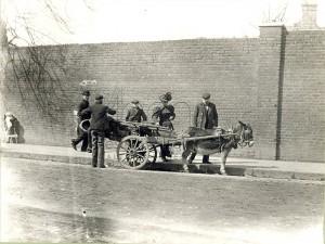 Donkey barrow 1901