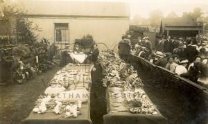 Ensign Garden Club Vegetable Show 1917