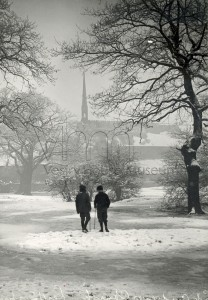 Forest at end of James Lane in Winter, c1930