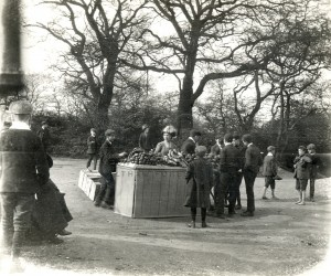 Fruit Stall by the Hollow Pond Leytonstone