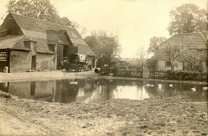 Moon Farm Billet Road duck pond