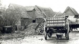 Ruckholt Farm