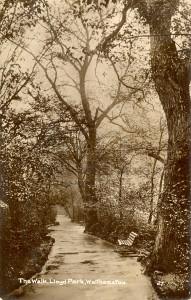 The Walk, Lloyd Park, Walthamstow