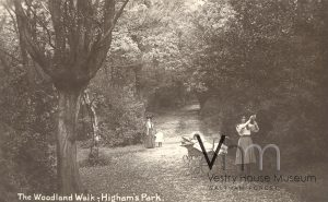 The Woodland Walk in Highams Park, c1905