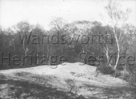 Wimbledon Common  –  C1961