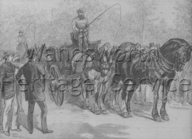 Battersea Park: view of Cart Horse Parade, June 14th- 1886