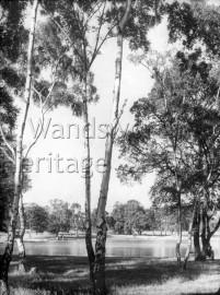 Pond on Putney Heath, –  C1910