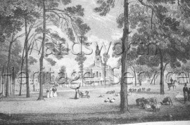 Clapham Common: view from a lithograph by T M  Baynes- 1823