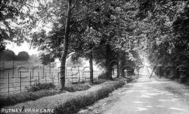 Putney Park Lane  –  C1955
